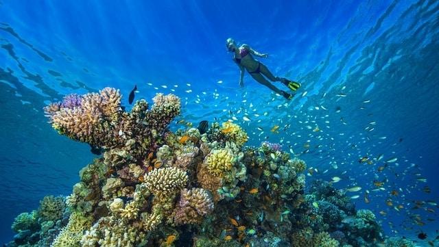 Scuba Diving Hurghada Prices